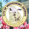 City of Waynesboro, GA - Government