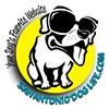 San Antonio Dog Life