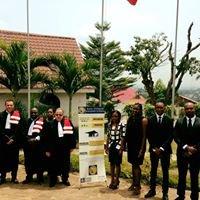 ESMK (Ecole Supérieure de Management de Kinshasa)