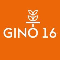 Gino16