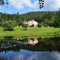 Auberge de la Cholotte au coeur du massif des Vosges