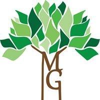Massage Grove