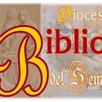 Biblioteca del Seminario di San Miniato