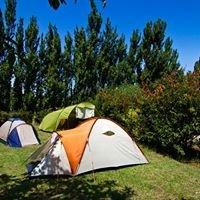 Camping à l'ombre des oliviers