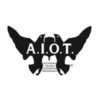AIOT - Accademia Italiana Osteopatia Tradizionale