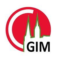GIM - IUT de Chartres