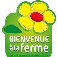 Marché à la ferme en Côtes d'Armor
