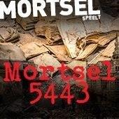 Streven, Mortsel
