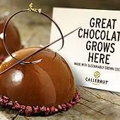 Barry Callebaut France