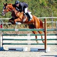 Chartres-Equitation