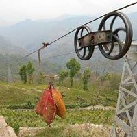 Namring Tea Garden