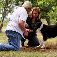 Vétérinaire à Domicile - Dordogne