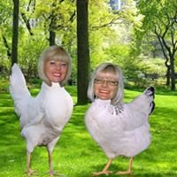 The Twa Hens