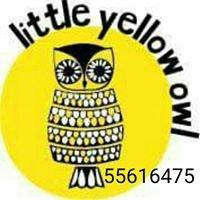 Little Yellow Owl