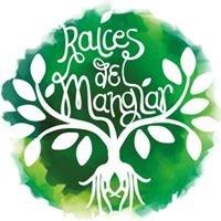 Raices Del Manglar