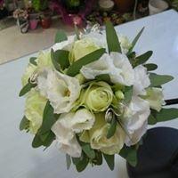 Les Fleurs D Aragon