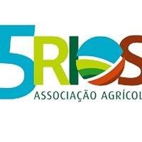 5 RIOS