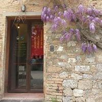 Museo Del Vino Vernaccia
