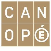 Canope Guyane