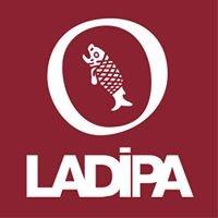 Laboratorio de Análisis y Diagnóstico del Patrimonio-LADIPA