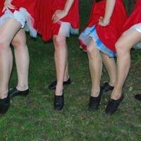Estonian Linedance Festival