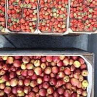 Mobiele fruitpers - Houtlandse tuinsappen