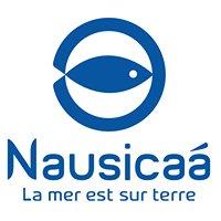Service éducatif de Nausicaa