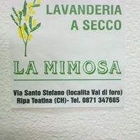 Lavanderia a secco e self-service La Mimosa