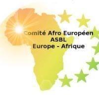 Comité AfroEuropéen