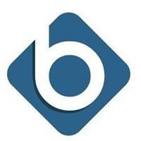 Banyon Data Systems
