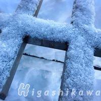 Higashikawa Hokkaido Thai-fan ฮิกาชิคาวะ