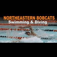 Northeastern High School Swimming & Diving