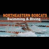 Northeastern High School Swimming & Diving