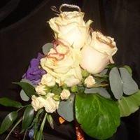 Daisy Mai Floral Designs