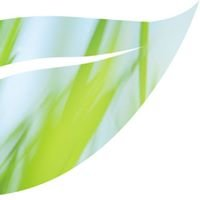 Greenstyle Tuinen