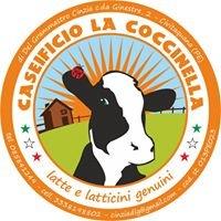 Azienda agricola La Coccinella di Del Grammasto Cinzia