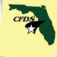 Central Florida Data Supply, Inc