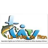 Aappma d'Evreux - La Truite de l'Iton