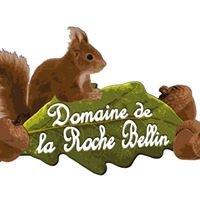 Domaine de La Roche Bellin