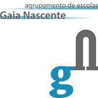 Agrupamento Escolas Gaia Nascente