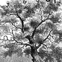 Jewish Genealogical Society of Connecticut (JGSCT)