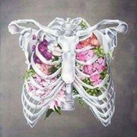 Anatomie-physiologie Humaine
