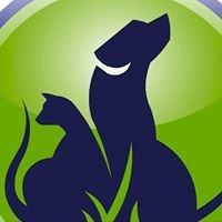 Bargara Veterinary Surgery