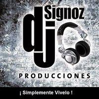 DJ Signoz