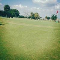 Sun City Center Golf Courses
