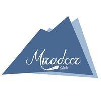 El Miradoor -audio estudio-