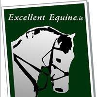Excellent Equine