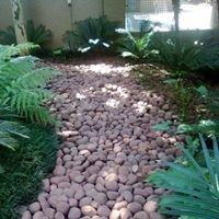 Pebbles For Sale