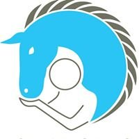 Changing Horses Ltd