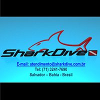 Shark Dive Centro de Mergulho
